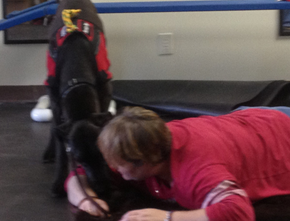 SKy helps monica get up when she falls-ADA Law for service animals- The Training Video