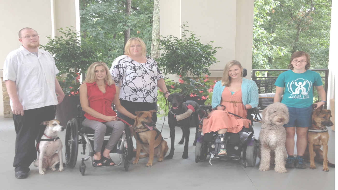 Train Your Employees on ADA Law as it Pertains to Service Animals